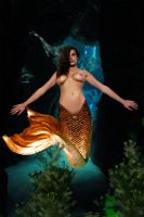 Mermaid Valentina ~ mermaids hate trespassers by sirenabonita