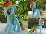 Rainbow Dash Plushie by dolphinwing