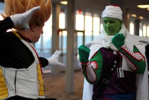 Piccolo we talked about this! by geekypandaphotobox
