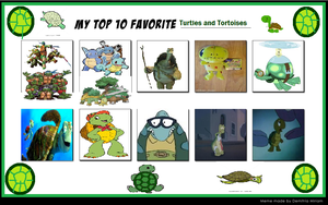 Top 10 Turtles and Tortoises by KessieLou