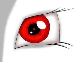 Blackjack's left eye by cuttincows