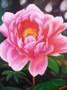 Peony by Onhyx27