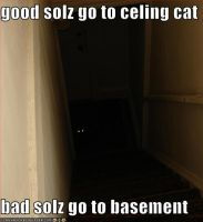 ZOMG BASEMENT CAT by x-o-skeleton