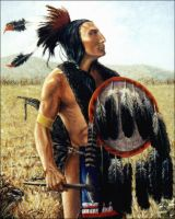 Chief Goes to War, Sioux by davinci3835