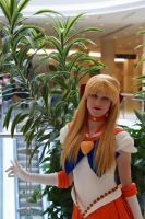 Sailor Venus at DTAC #4 by Lightning--Baron