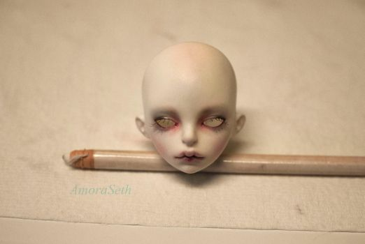 Ludwig Face Up Front by Amoraseth