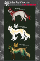 .:WinterWolf AUCTION:.CLOSED by WhiteSpiritWolf