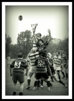 RUGBY by cuenka