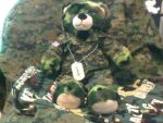 My new build a bear by Mighty-C-amurai