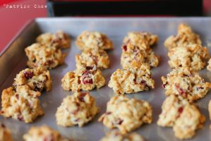 Cranberry walnut cookies by patchow