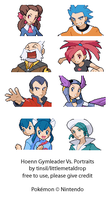 Hoenn Gymleader Vs Sprites by TinSil