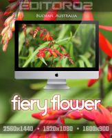 Fiery Flower Wallpaper by GavinAsh