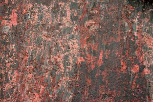 Texture 2 by Galloping-Textures