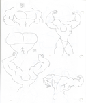 Muscle Sketch References 04 by TheFranksterChannel