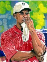 Tiger Woods by coachp42