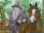 Gandalf and Pony by igtica