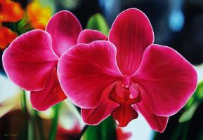 oil painting on canvas 70x100cm (red orchid) by fabianoMillani