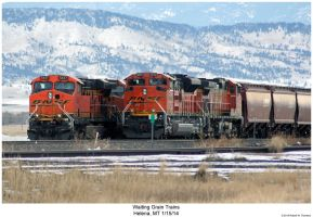 Waiting Grain Trains by hunter1828