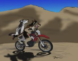 Dirtbike ride by jmillart