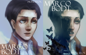 Marco Bodt Postcards by Londei