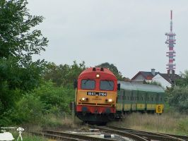 M41 2164 with fast train in Gyor-gyarvaros on 2010 by morpheus880223