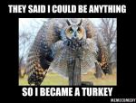 The Owl Turkey Meme by MemeComedy