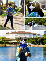 Hawaii Furmeet by Tsebresos