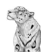 Snow Leopard Inked by HDevers