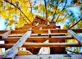 Our Treehouse Built by My Husband {Photo 12} by Empress-XZarrethTKon