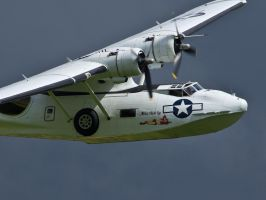 Catalina Close Up Old Warden by davepphotographer
