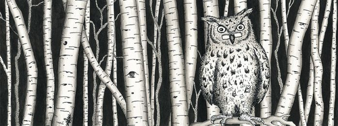 Owl and Aspen by gnarlycat