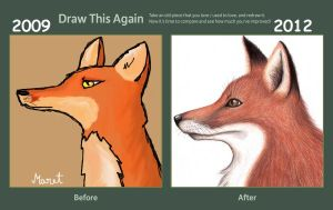 Draw This Again Fox by mirjam10350