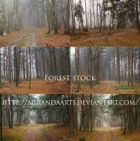 Forest stock pack... by mirandaarts