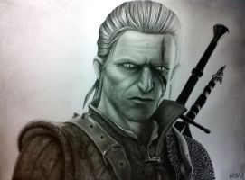 The Witcher 2: Assassins of Kings by Bajan-Art