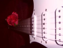 Kiss from a Rose.- by mspawa