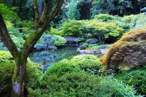 Zen Garden pond and bridge by Celem