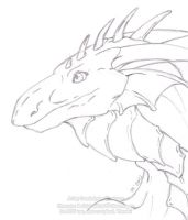 2010 Gift .o16 - Dragon by Drache-Lehre