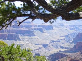 Grand-Canyon1 by Trisaw1