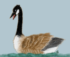 Goose by Alisha-town