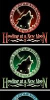 Howling At A New Moon by Akissi