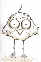 Hoot by midnightsubmission