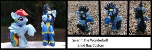 Soarin' Custom by Lolly-pop-girl732