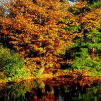 Fall Reflections 4 by Brian-B-Photography