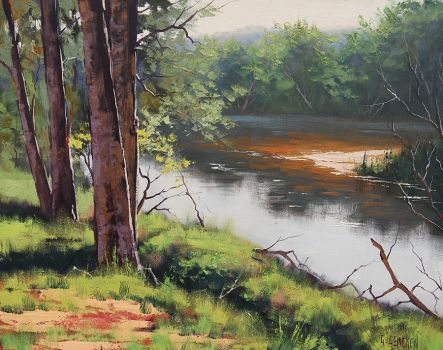 Banks Of the Coxs River by artsaus