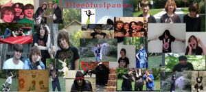 bloodlustpanda Collage by zombis-cannibal