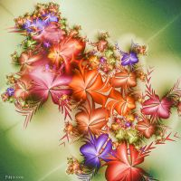 Flower Power by Omron
