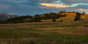 Yellowstone Landscape by MacroMagnificent