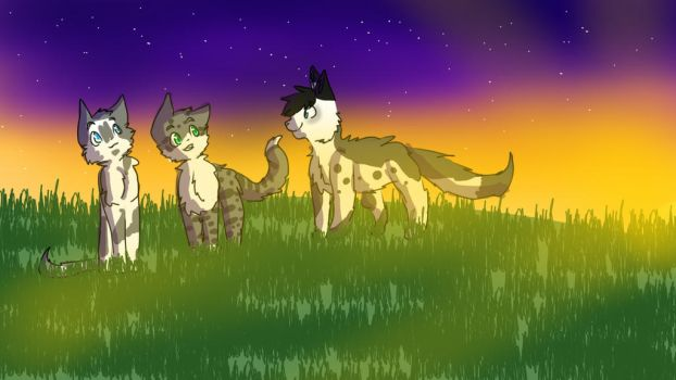 Three with the Sunset  by FierceKitKat