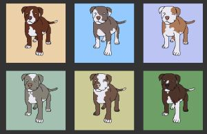 Puppy Adopts by NSRescueCenter