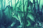 Year of the TIGER by fennet